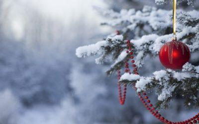 Le CoReg Île-de-France vous souhaite d'excellentes fêtes de fin d'année